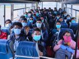 coronavirus effects india